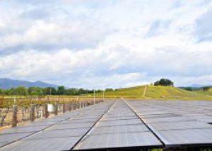 Honig Solar Array