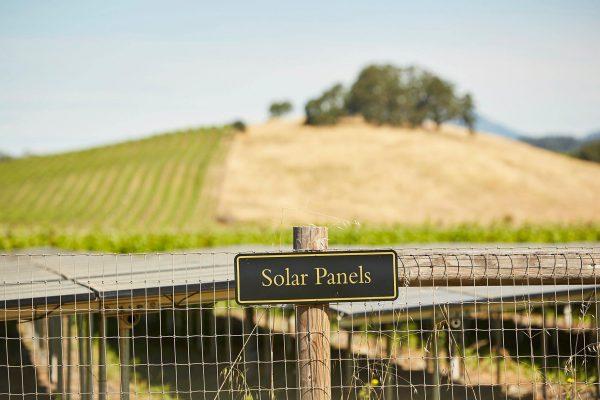 Honig Solar Panels 2