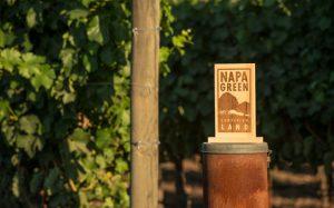 Napa-Green-Land-Sign