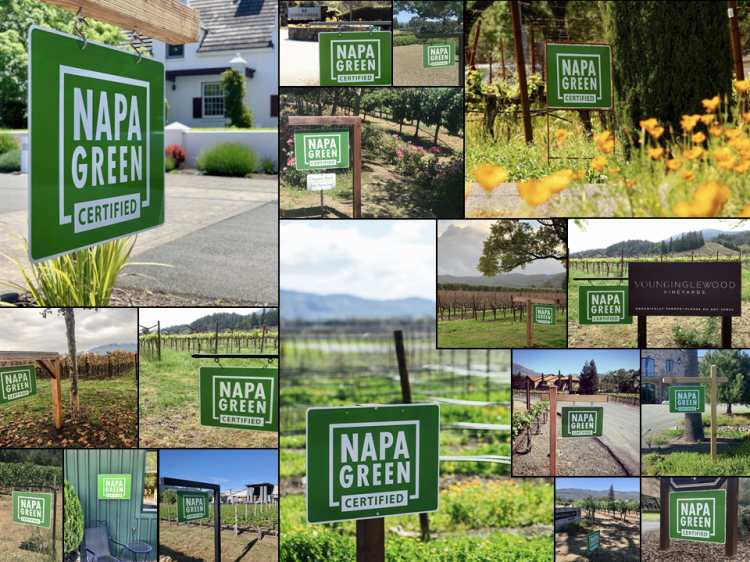 Napa Green Sign