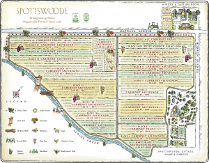 SPW-Estate-Vineyard-Map-2021