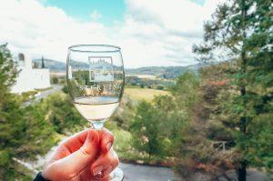 Sterling-Vineyards-Napa-Valley-California-3