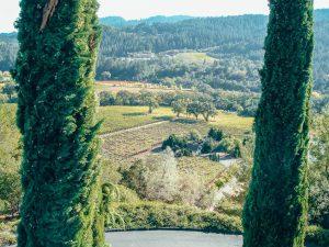 Sterling-Vineyards-Napa-Valley-California