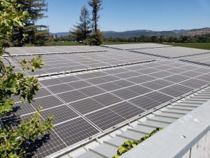 pr-St.-Supery-Wines-Solar-SolarCraft